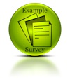 Example Survey download here