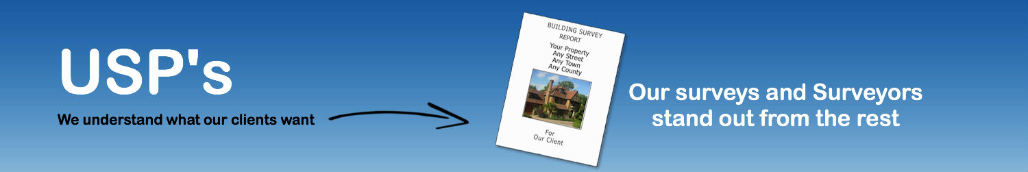 Unique Selling Points Property Survey